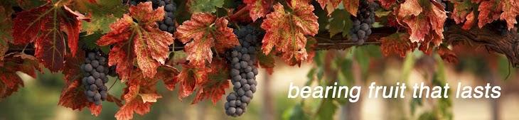 grapes header 2